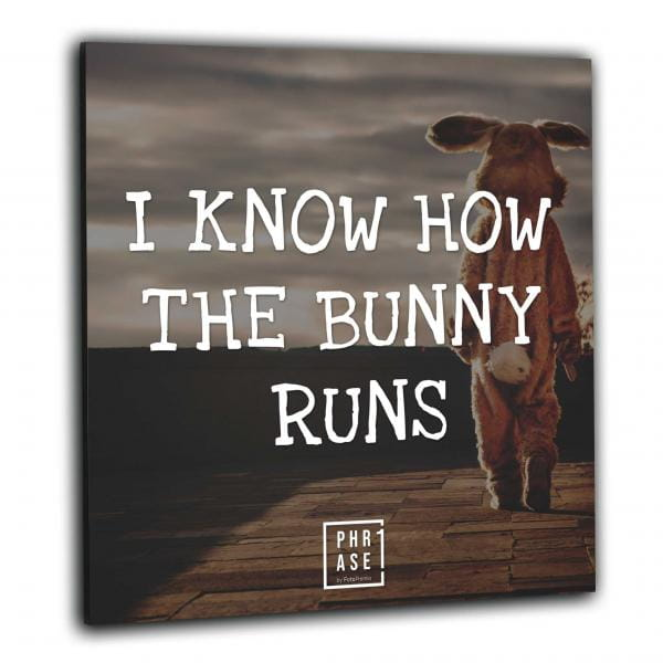 I know how the bunny runs | Wandbild